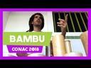 Bambu - que tal uma cadeia produtiva em Alagoas?